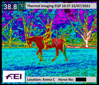 Example of monitoring horses in work using thermal imaging cameras at the Tokyo 2020 Olympic Games. © FEI.